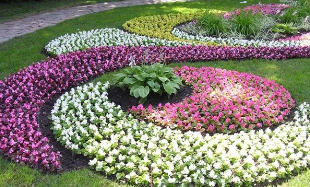 Beautiful flower garden images