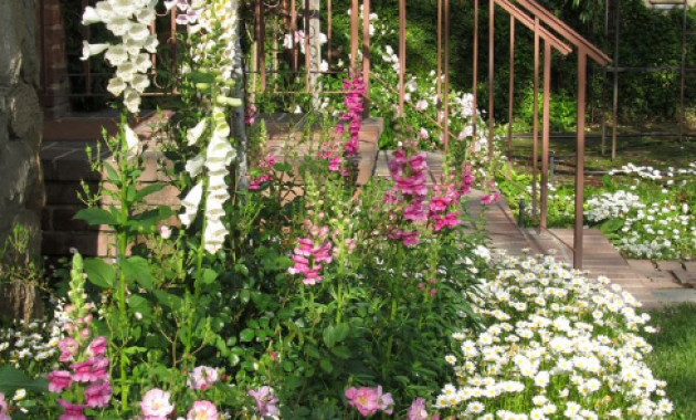Cottage garden design for small gardens