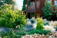 Drought tolerant landscape design plans