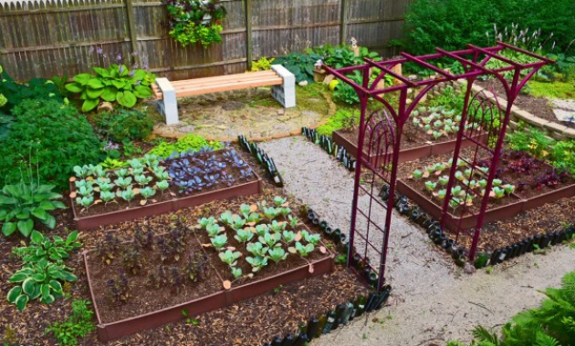 backyard vegetable garden design pictures