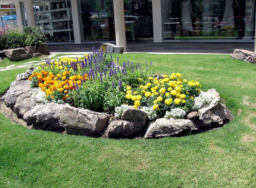 Create a New Garden with the Best Flower Garden Design